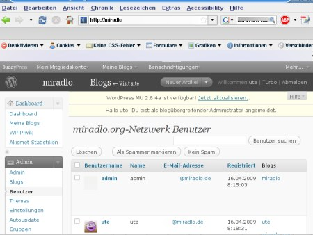 Screenshot Adminbereich WP-MU
